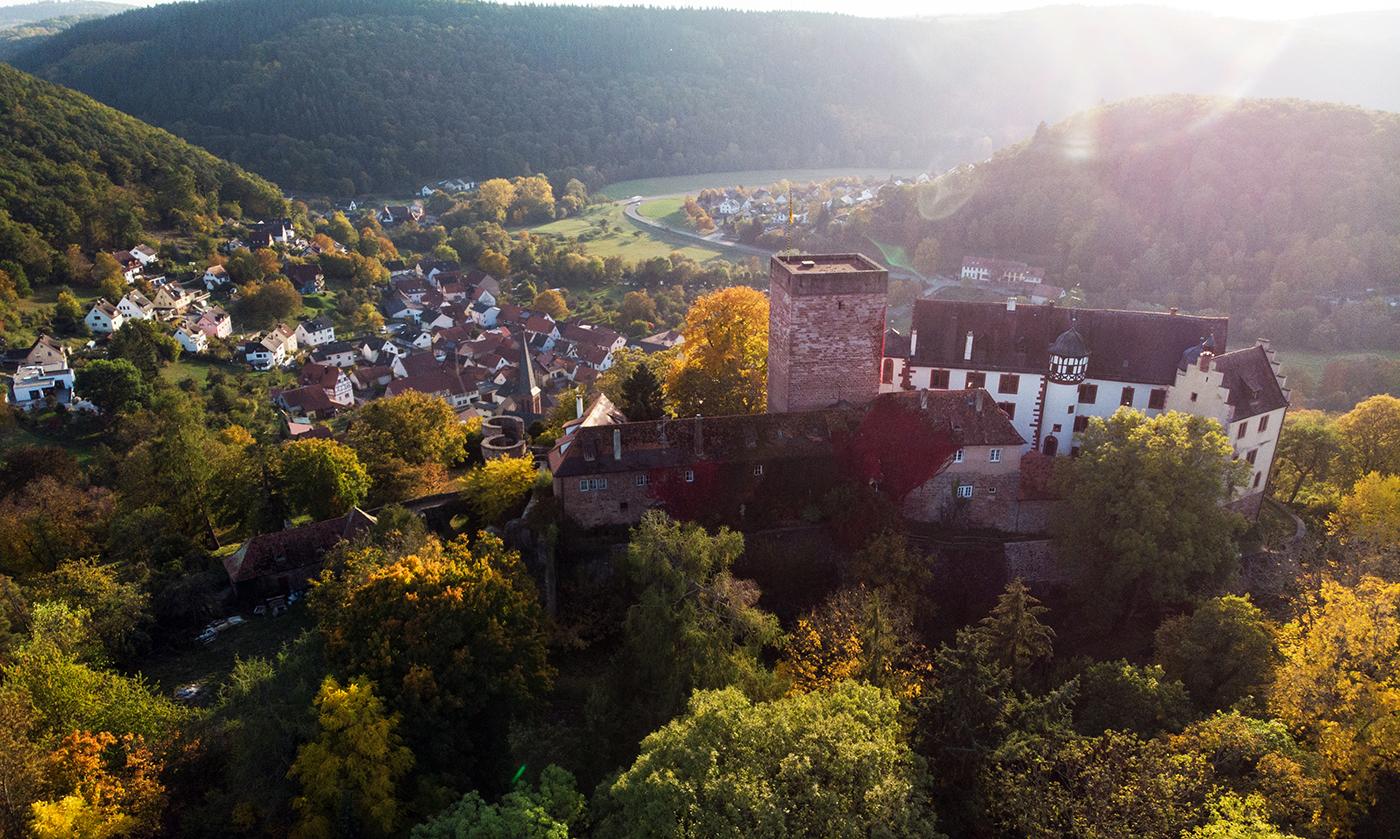 Burg und Burgpark Gamburg